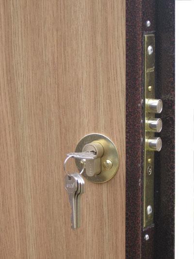 укрепить посоветуйте замки для входной двери виду